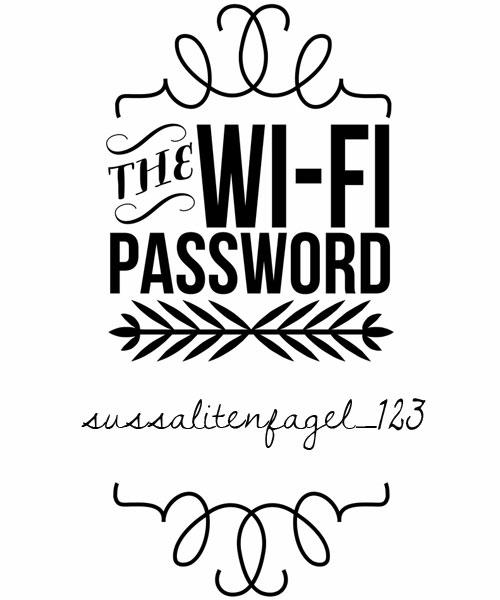 wifi101